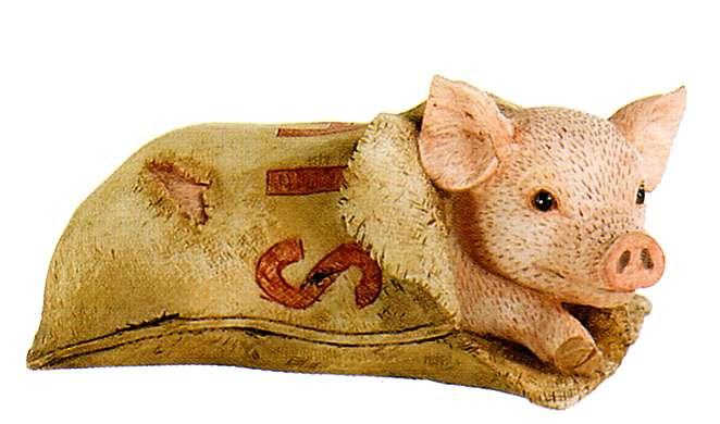 pig-in-a-poke2